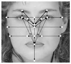 Биометрия по рисунку лица